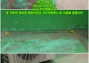 분당 서현중학교 옥상 방수공사